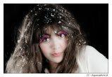 elegancephoto-dsc_105940